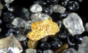 El buscador de oro … el buscador de clientes