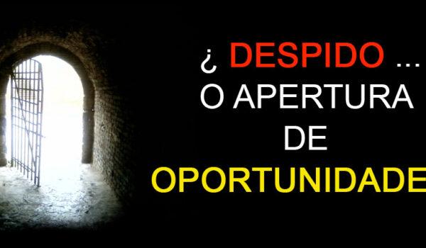 Despido … ¿apertura de oportunidades?